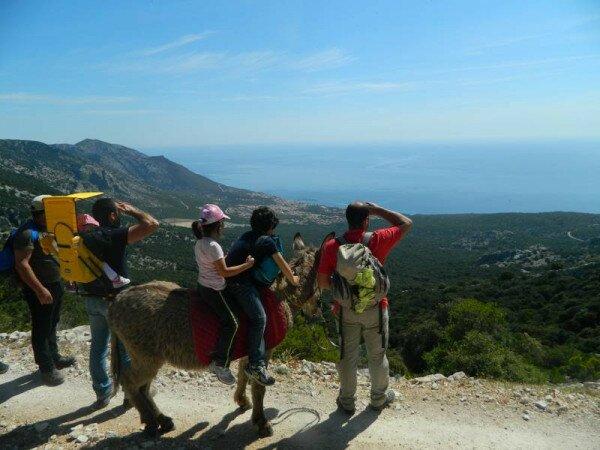 Прогулки по Сардинии на осликах с видом на море